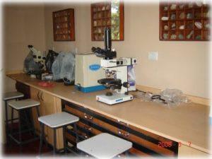 laboratorio_geologia03